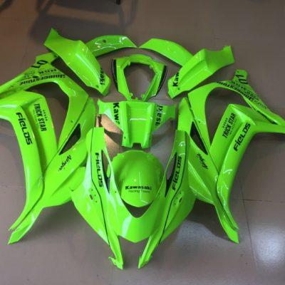 2016-2017 zx10r florescent green
